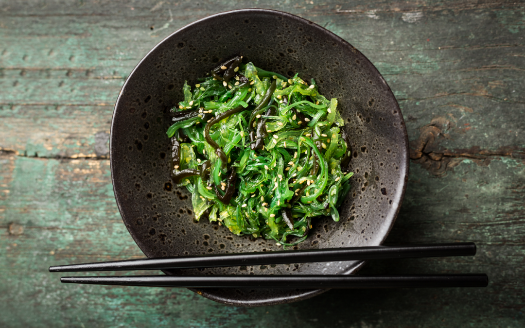 Not Just Fish Food: Kelp is Healthy for You, Too!